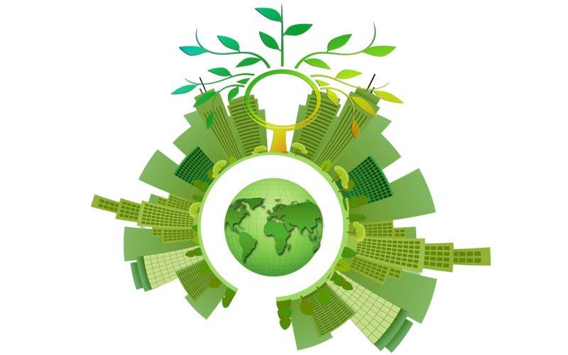 Ekologia. Zero waste, ruch dla ziemi.