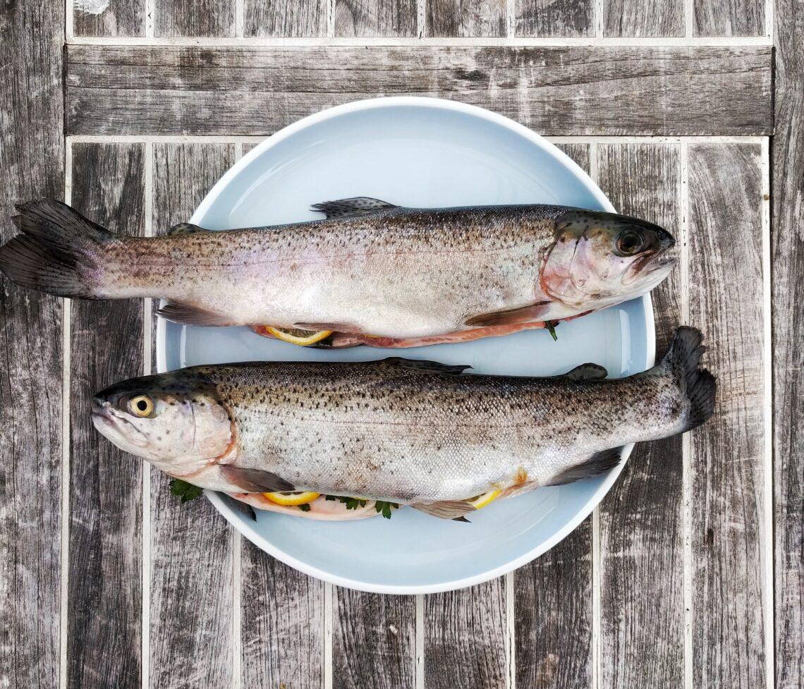 ryby. nietolerancja histaminy