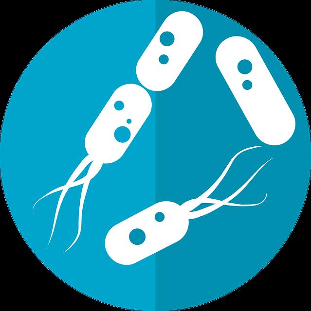 Rysunek bakterii jelitowych. Zdjęcie autorstwa mcmurryjulie z Pixabay.com